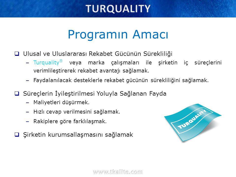 Programın Amacı  Ulusal ve Uluslararası Rekabet Gücünün Sürekliliği – Turquality ® veya marka çalışmaları ile şirketin iç süreçlerini verimlileştirer