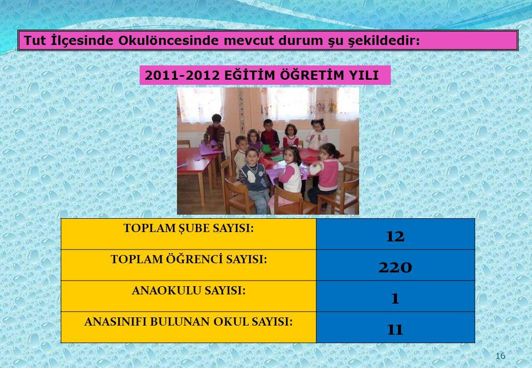 16 Tut İlçesinde Okulöncesinde mevcut durum şu şekildedir: 2011-2012 EĞİTİM ÖĞRETİM YILI TOPLAM ŞUBE SAYISI: 12 TOPLAM ÖĞRENCİ SAYISI: 220 ANAOKULU SAYISI: 1 ANASINIFI BULUNAN OKUL SAYISI: 11