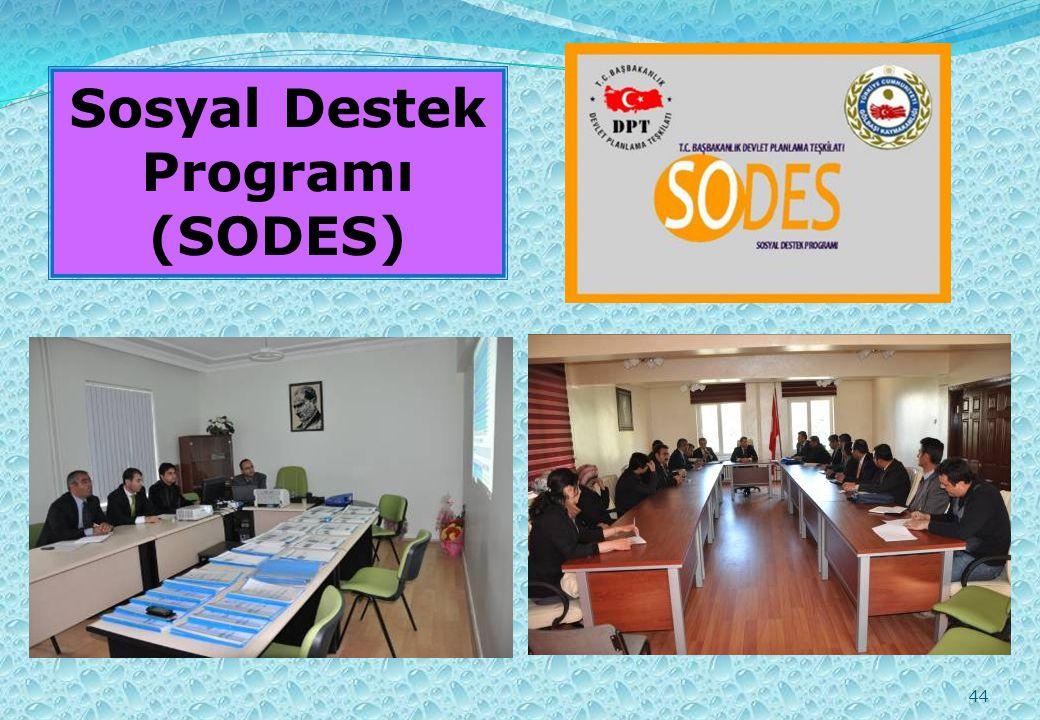 44 Sosyal Destek Programı (SODES)