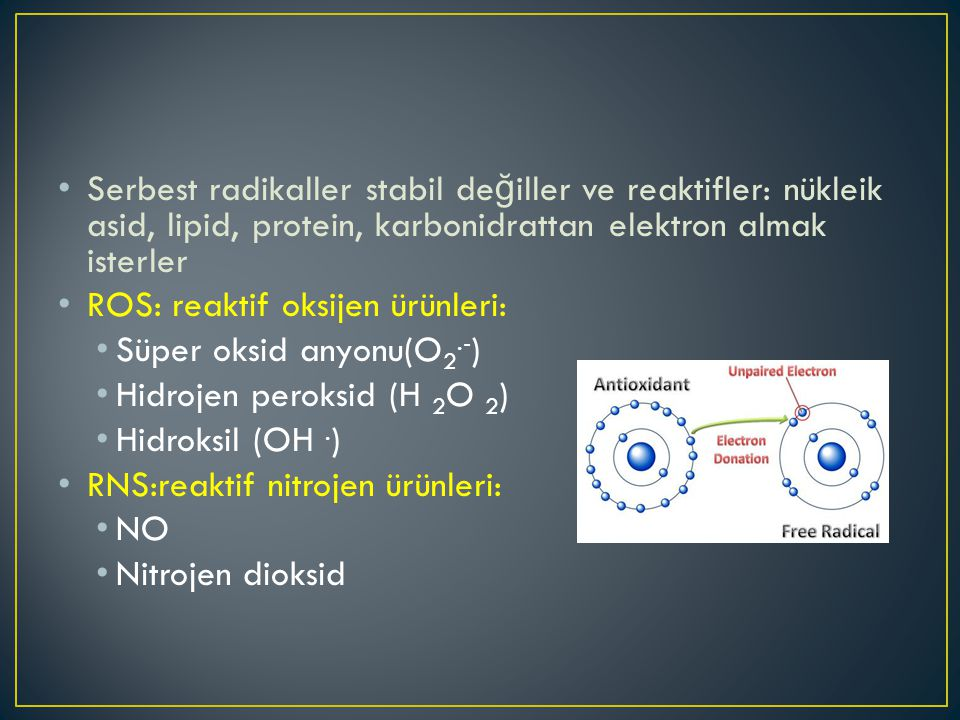 Serbest radikaller stabil de ğ iller ve reaktifler: nükleik asid, lipid, protein, karbonidrattan elektron almak isterler ROS: reaktif oksijen ürünleri: Süper oksid anyonu(O 2.- ) Hidrojen peroksid (H 2 O 2 ) Hidroksil (OH.