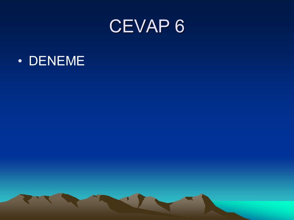 CEVAP 6 DENEME