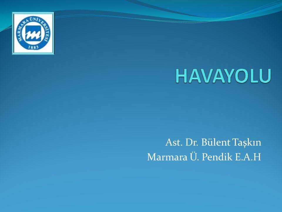 Ast. Dr. Bülent Taşkın Marmara Ü. Pendik E.A.H