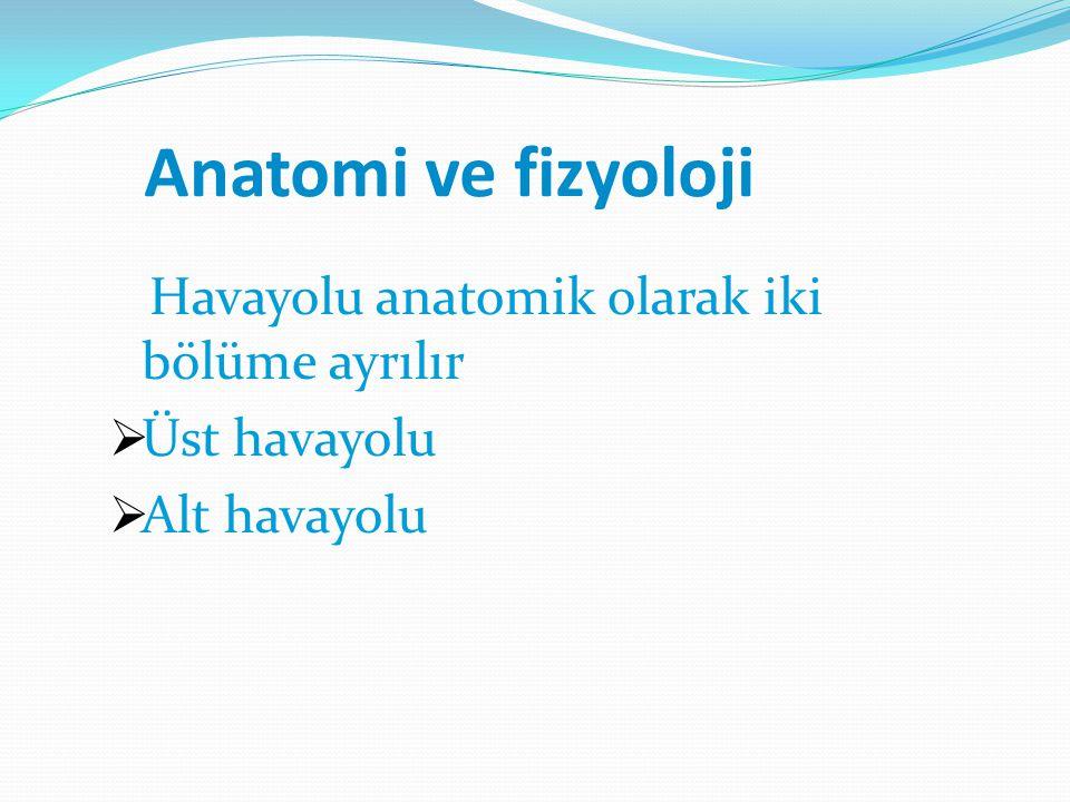Anatomi ve fizyoloji Havayolu anatomik olarak iki bölüme ayrılır  Üst havayolu  Alt havayolu