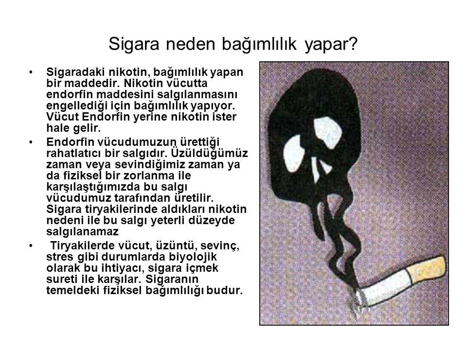 Sigara neden bağımlılık yapar? Sigaradaki nikotin, bağımlılık yapan bir maddedir. Nikotin vücutta endorfin maddesini salgılanmasını engellediği için b