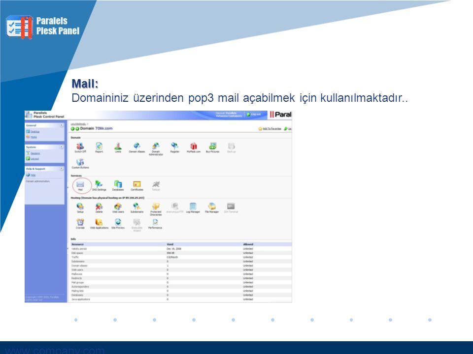 www.company.com Mail: Domaininiz üzerinden pop3 mail açabilmek için kullanılmaktadır..