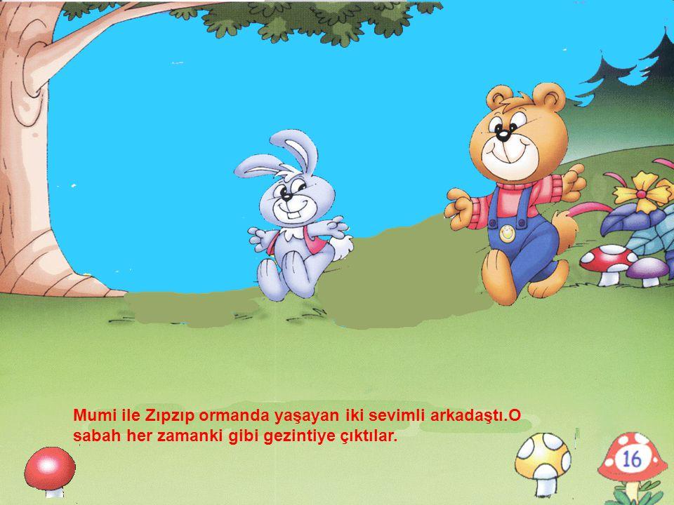 Mumi ile Zıpzıp ormanda yaşayan iki sevimli arkadaştı.O sabah her zamanki gibi gezintiye çıktılar.