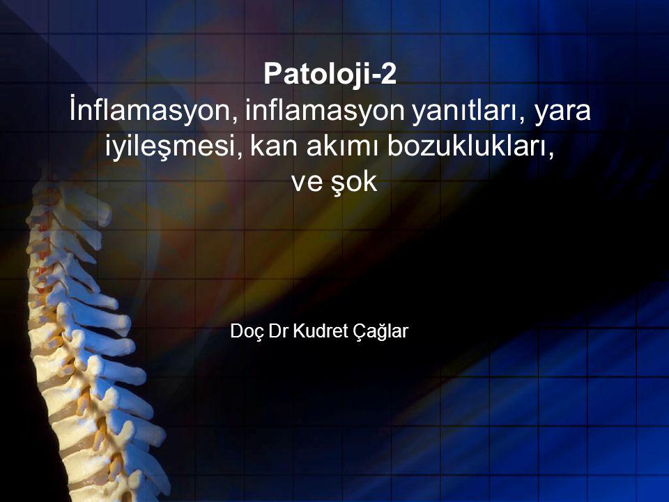 Patoloji-2 İnflamasyon, inflamasyon yanıtları, yara iyileşmesi, kan akımı bozuklukları, ve şok Doç Dr Kudret Çağlar