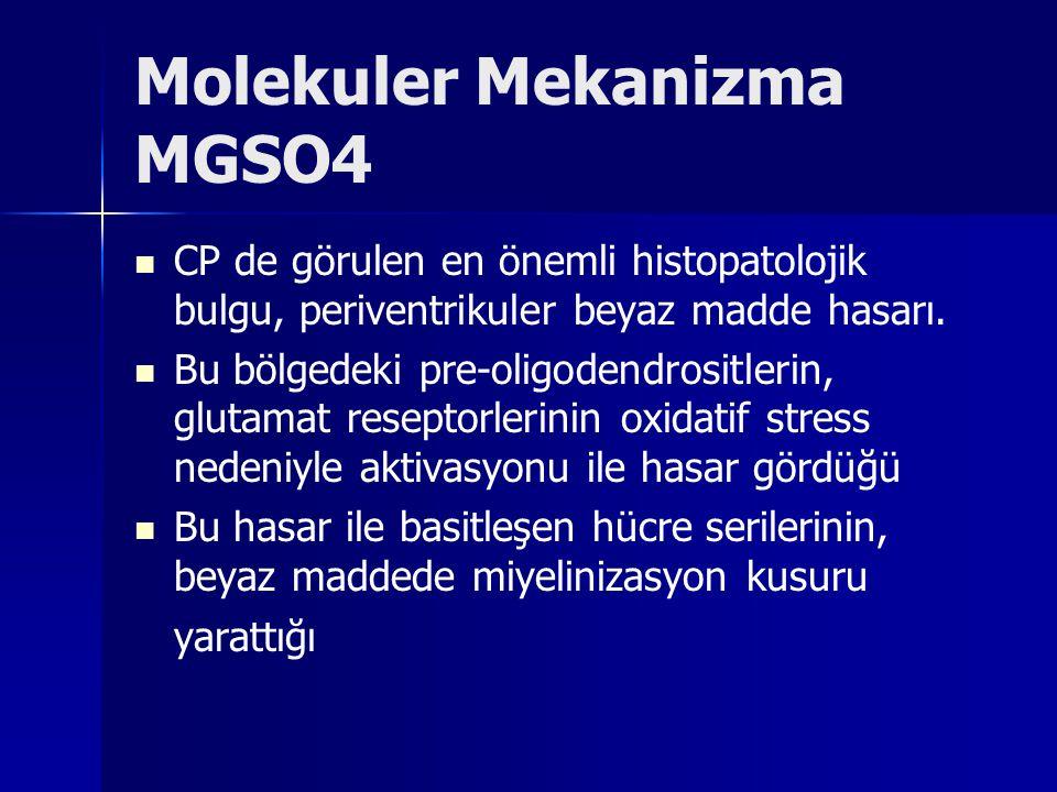 Molekuler Mekanizma MGSO4 CP de görulen en önemli histopatolojik bulgu, periventrikuler beyaz madde hasarı. Bu bölgedeki pre-oligodendrositlerin, glut