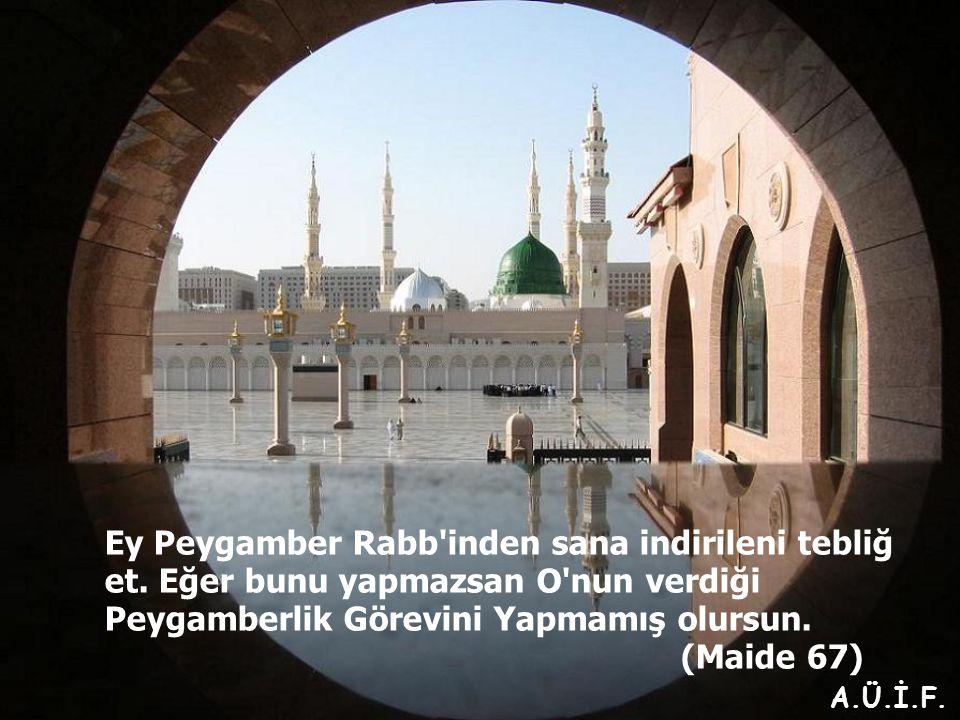 Ey Peygamber Rabb inden sana indirileni tebliğ et.