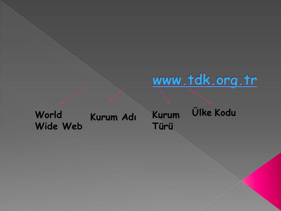 World Wide Web Kurum Adı Kurum Türü Ülke Kodu