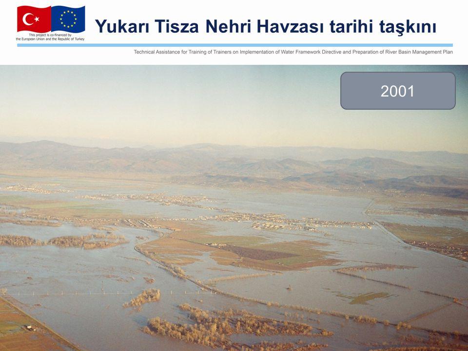 Yukarı Tisza Nehri Havzası tarihi taşkını 2001