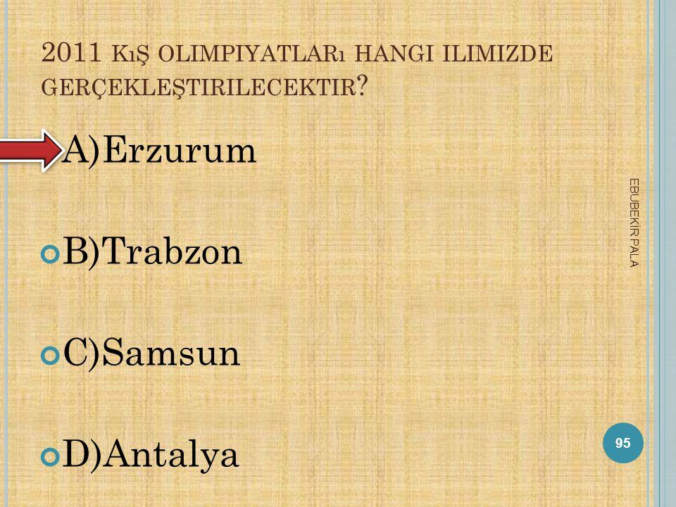 A NI HARABELERI NEREDEDIR ? A)Erzurum B)İstanbul C)Kars D)Rize 94 EBUBEKİR PALA