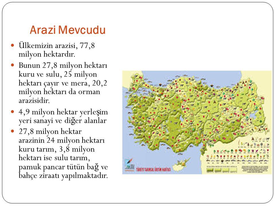 Arazi Mevcudu Ülkemizin arazisi, 77,8 milyon hektardır. Bunun 27,8 milyon hektarı kuru ve sulu, 25 milyon hektarı çayır ve mera, 20,2 milyon hektarı d