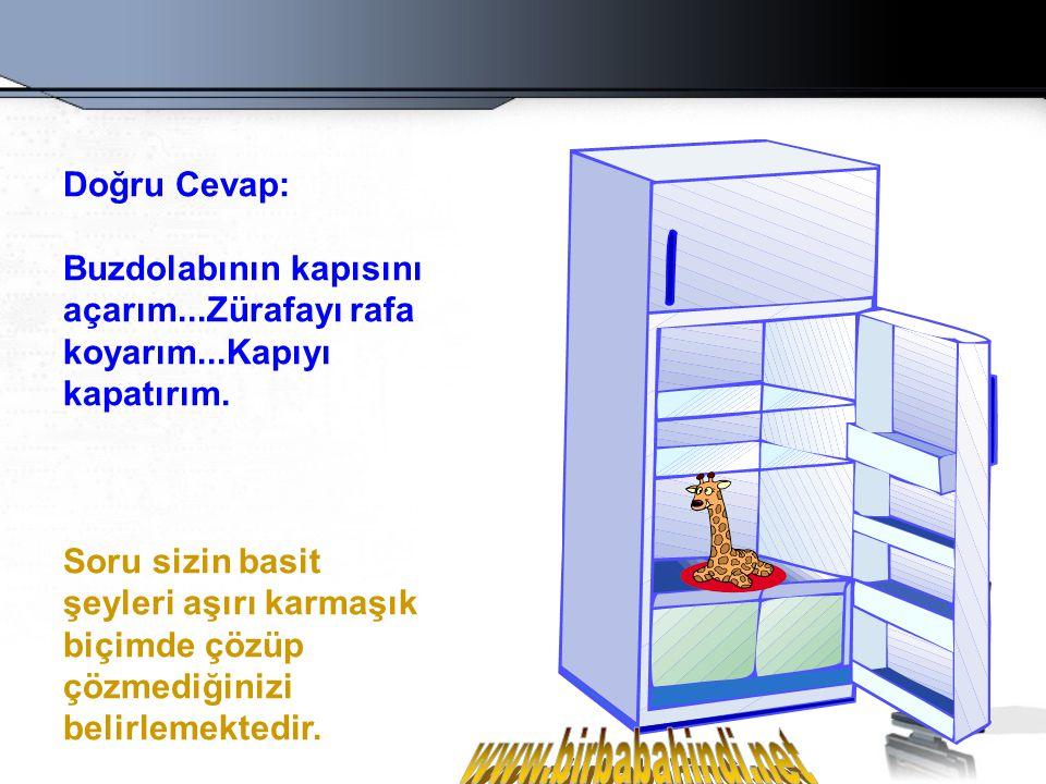 Soru # 2 Bir fili buzdolabına nasıl koyarsınız?