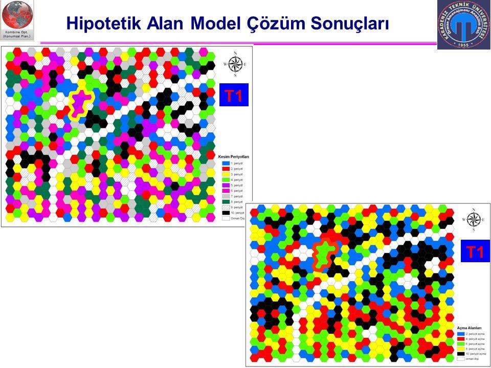 Ali İhsan KADIOĞULLARI, K.T.Ü. 2012 Trabzon Hipotetik Alan Model Çözüm Sonuçları T1