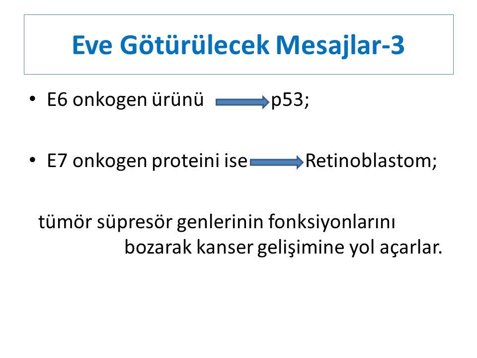 Eve Götürülecek Mesajlar-3 E6 onkogen ürünü p53; E7 onkogen proteini ise Retinoblastom; tümör süpresör genlerinin fonksiyonlarını bozarak kanser geliş