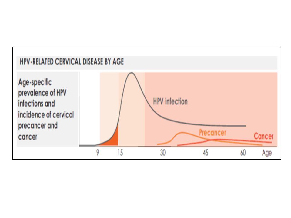 Eve Götürülecek Mesajlar-2 Karsinogenez için ko-faktörler de rol oynamaktadır.