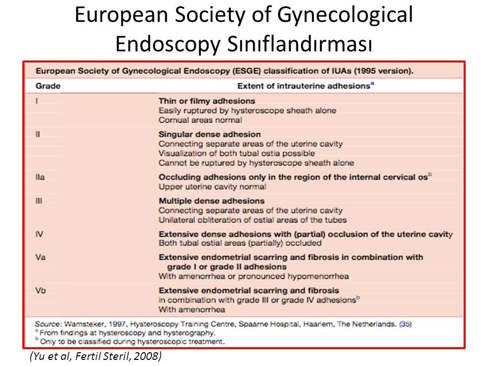 European Society of Gynecological Endoscopy Sınıflandırması (Yu et al, Fertil Steril, 2008)