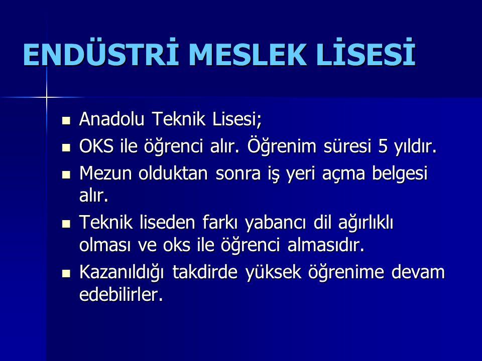 ENDÜSTRİ MESLEK LİSESİ Anadolu Teknik Lisesi; Anadolu Teknik Lisesi; OKS ile öğrenci alır.