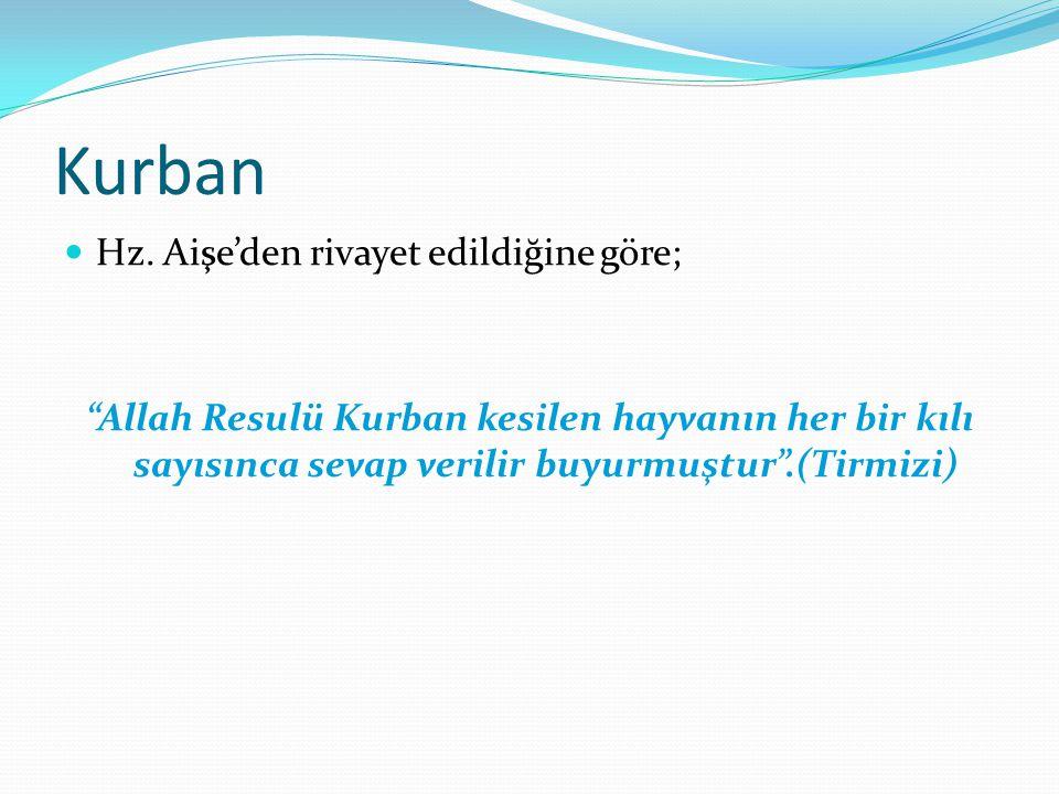 """Kurban Hz. Aişe'den rivayet edildiğine göre; """"Allah Resulü Kurban kesilen hayvanın her bir kılı sayısınca sevap verilir buyurmuştur"""".(Tirmizi)"""