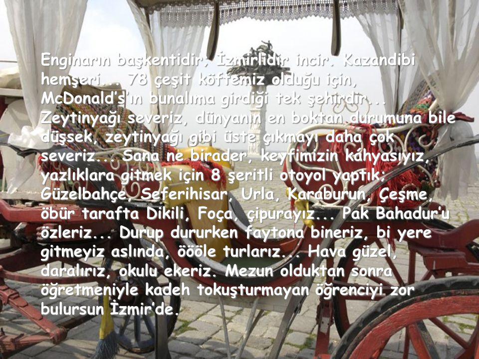 Erkeklerimiz de fena değildir hani... Detaya girmeyeyim, Ayhan Işık, Metin Oktay, Mustafa Denizli mesela, bi fikir verir sana... Ertuğrul Özkök'ün kır