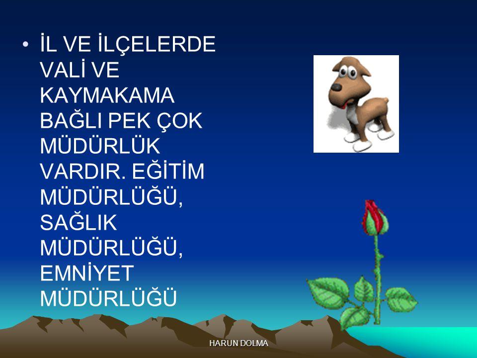 ÜLKEMİZİN BAŞKENTİ ANKARA'DIR.