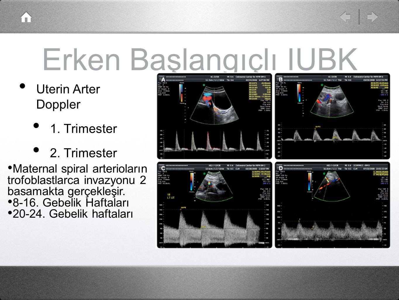 Erken Başlangıçlı IUBK Uterin Arter Doppler 1. Trimester 2. Trimester Maternal spiral arterioların trofoblastlarca invazyonu 2 basamakta gerçekleşir.