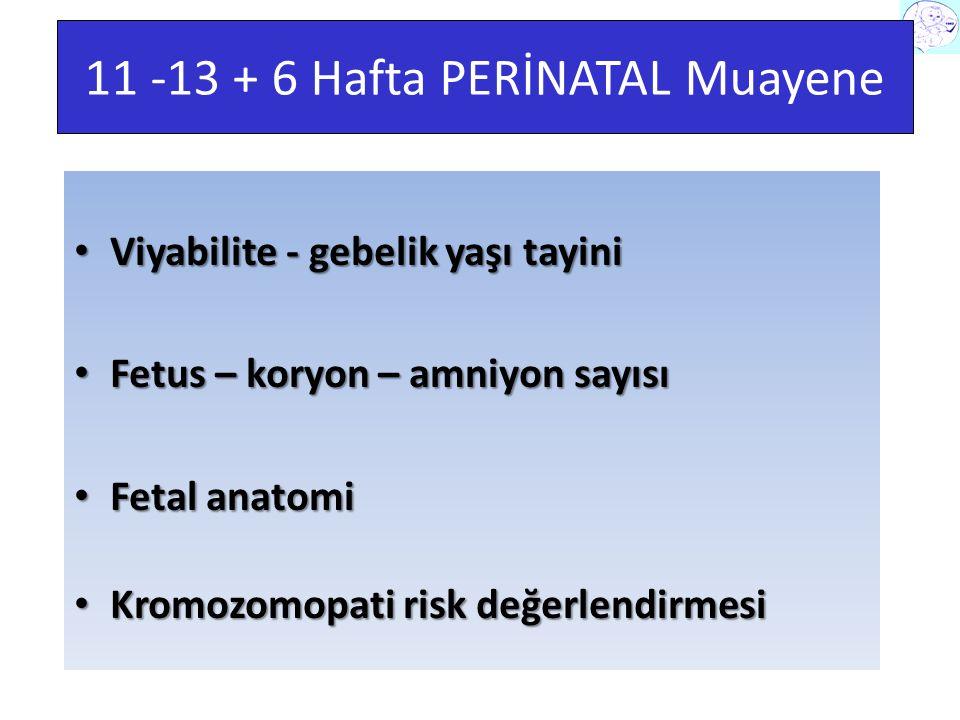 11 -13 + 6 Hafta PERİNATAL Muayene Viyabilite - gebelik yaşı tayini Viyabilite - gebelik yaşı tayini Fetus – koryon – amniyon sayısı Fetus – koryon – amniyon sayısı Fetal anatomi Fetal anatomi Kromozomopati risk değerlendirmesi Kromozomopati risk değerlendirmesi