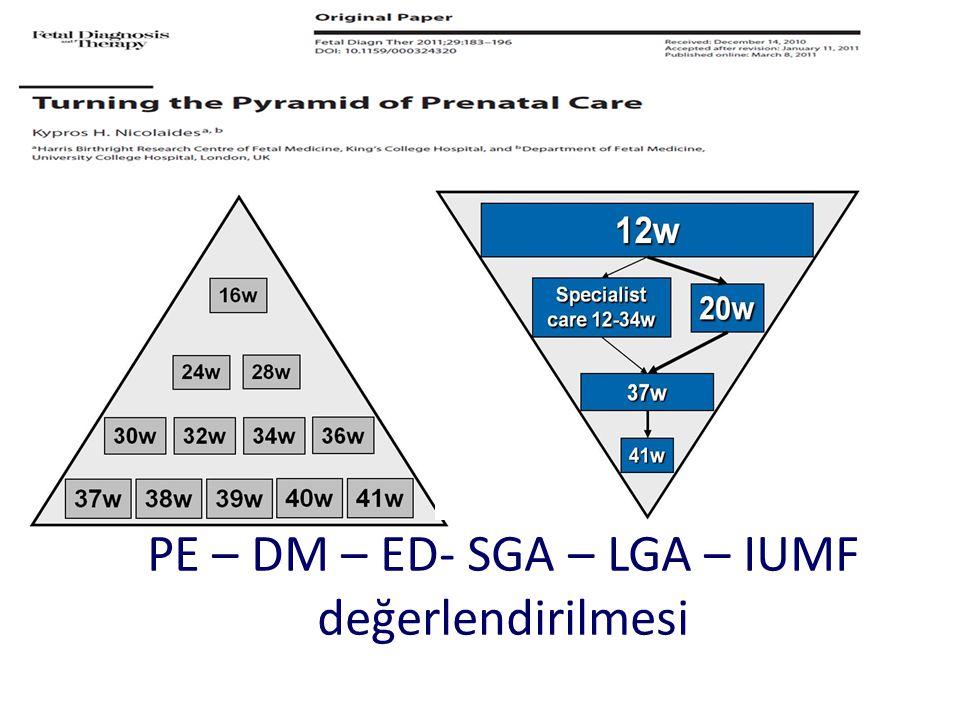 PE – DM – ED- SGA – LGA – IUMF değerlendirilmesi