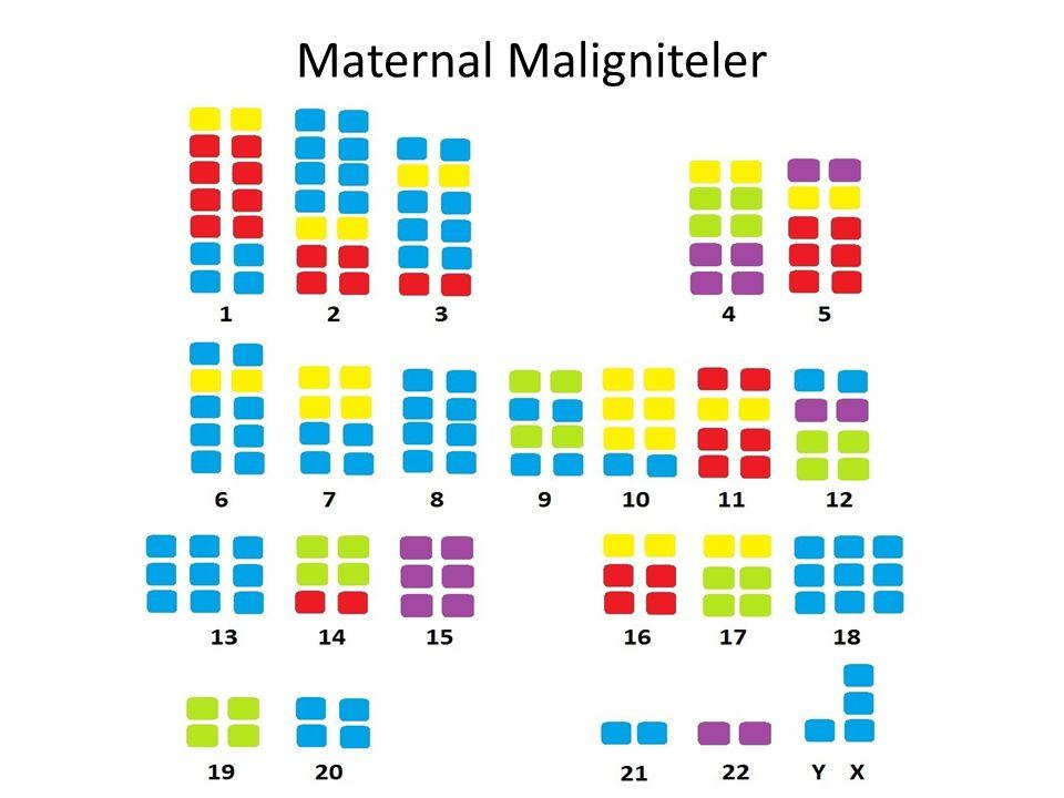 37 Maternal Maligniteler