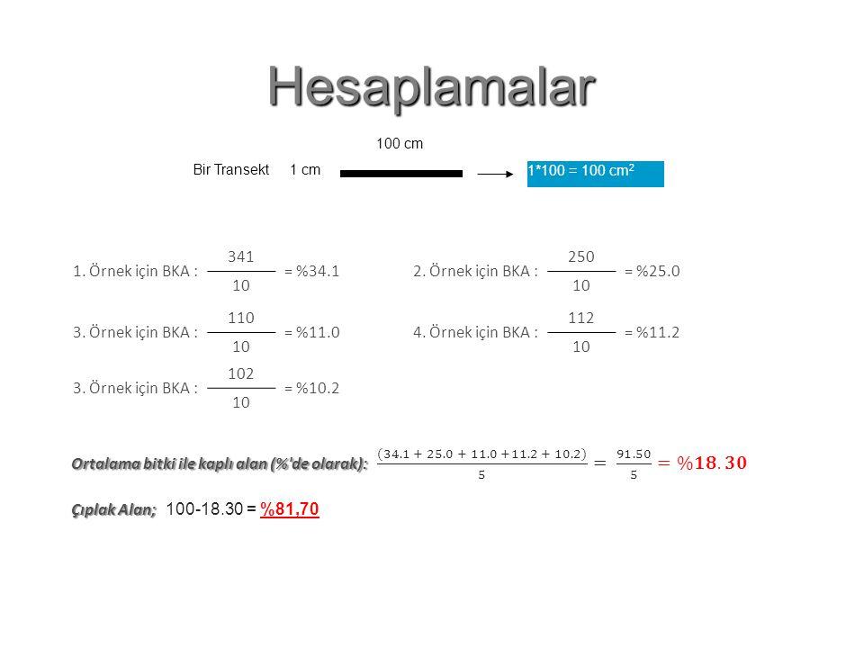 Hesaplamalar Bir Transekt 1 cm 100 cm 1*100 = 100 cm 2 1. Örnek için BKA : 341 = %34.1 10 Çıplak Alan Oranı : 100-34.1 = 65.9 2. Örnek için BKA : 250
