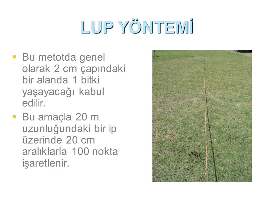 LUP YÖNTEMİ   Bu metotda genel olarak 2 cm çapındaki bir alanda 1 bitki yaşayacağı kabul edilir.   Bu amaçla 20 m uzunluğundaki bir ip üzerinde 20