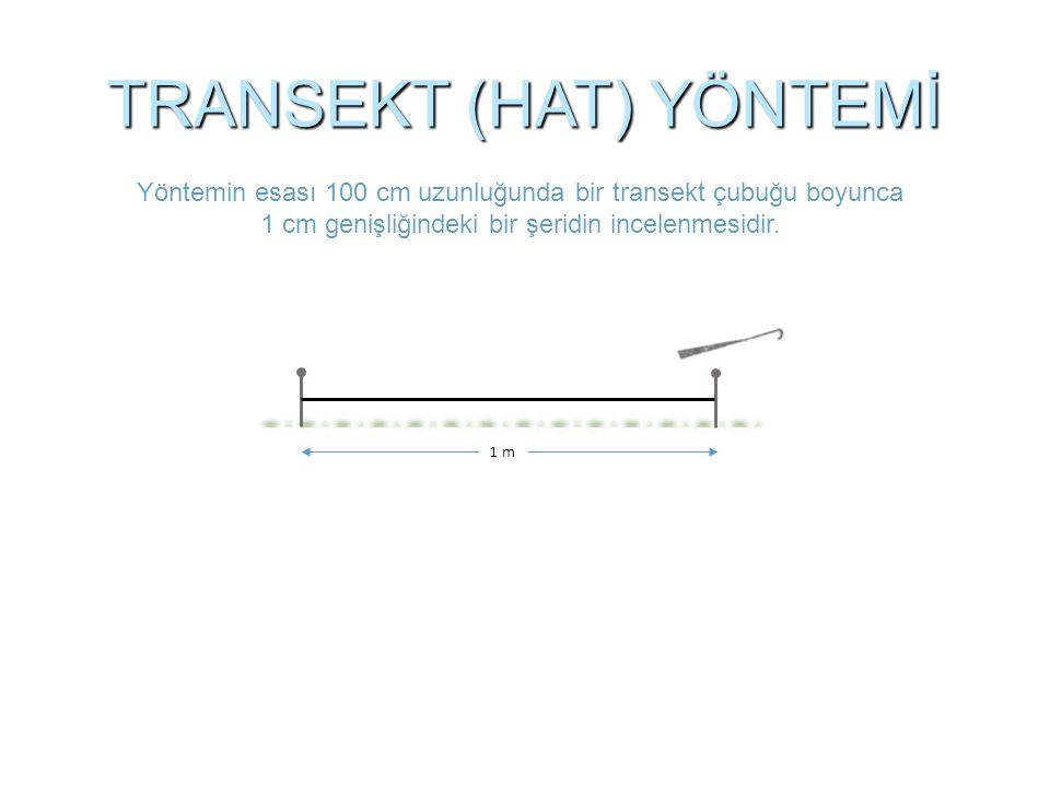 TRANSEKT (HAT) YÖNTEMİ Yöntemin esası 100 cm uzunluğunda bir transekt çubuğu boyunca 1 cm genişliğindeki bir şeridin incelenmesidir. 1 m