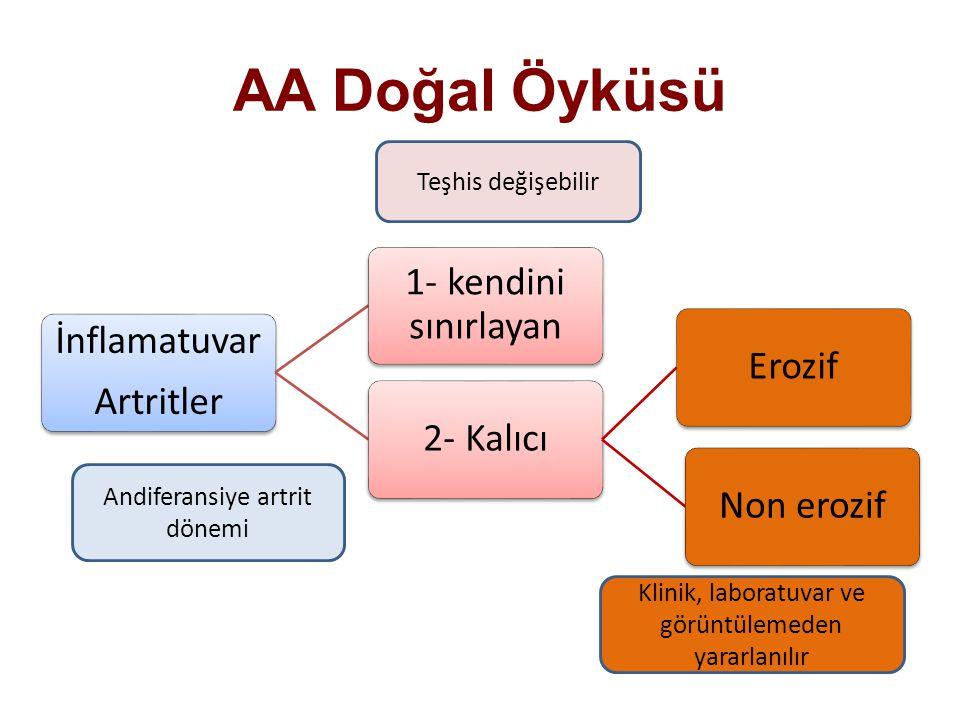 AA Doğal Öyküsü İnflamatuvar Artritler 1- kendini sınırlayan 2- KalıcıErozifNon erozif Andiferansiye artrit dönemi Teşhis değişebilir Klinik, laboratu