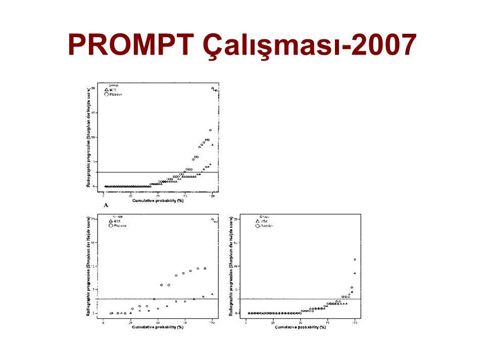PROMPT Çalışması-2007
