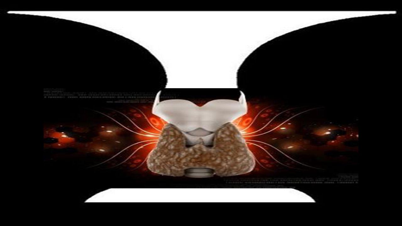 Sunum Planı Tiroid bezi ve hormonları Riskli bireyler ve tarama önerisi Tiroid muayenesi ve Topuk Kanı Alma (Video ) Hipotiroidi - Hipertiroidi -Nedenler - Ş ikayet ve Bulgular -Tanı -Tedavi -Takip Nodüller ve Kanser Sürpriz Sanatçı!!