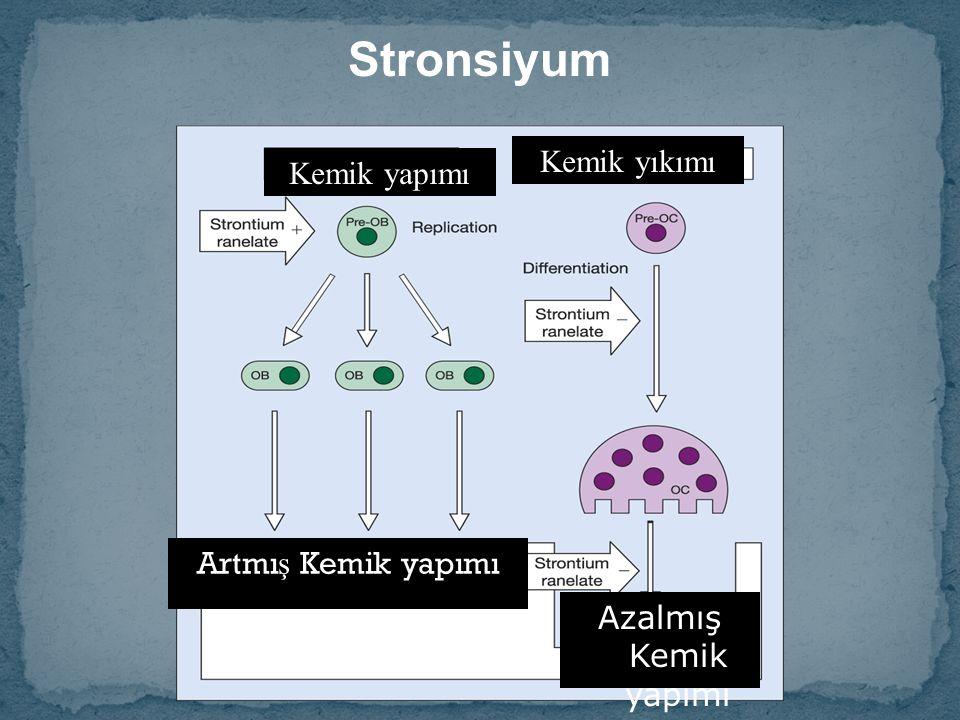 Stronsiyum Kemik yıkımı Kemik yapımı Artmı ş Kemik yapımı Azalmış Kemik yapımı