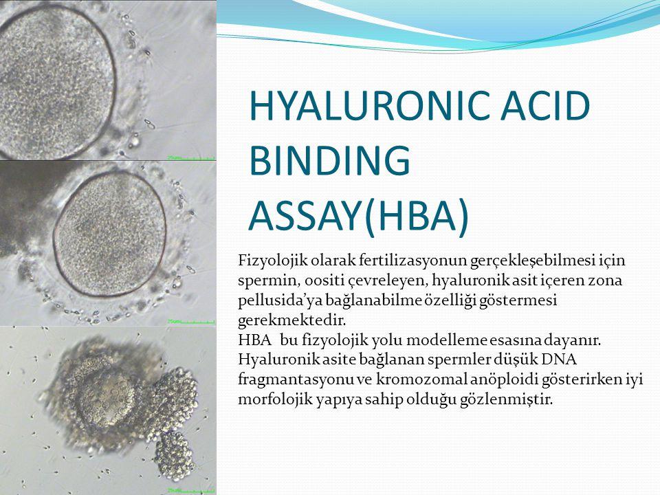 HYALURONIC ACID BINDING ASSAY(HBA) Fizyolojik olarak fertilizasyonun gerçekleşebilmesi için spermin, oositi çevreleyen, hyaluronik asit içeren zona pellusida'ya bağlanabilme özelliği göstermesi gerekmektedir.