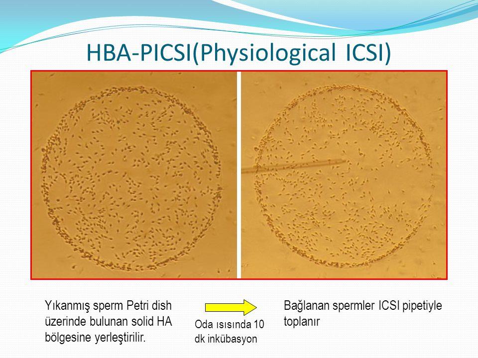 HBA-PICSI(Physiological ICSI) Yıkanmış sperm Petri dish üzerinde bulunan solid HA bölgesine yerleştirilir. Oda ısısında 10 dk inkübasyon Bağlanan sper