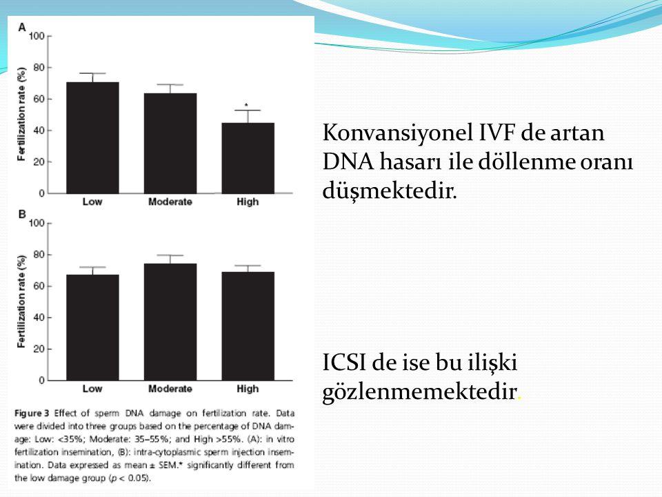 Konvansiyonel IVF de artan DNA hasarı ile döllenme oranı düşmektedir. ICSI de ise bu ilişki gözlenmemektedir.