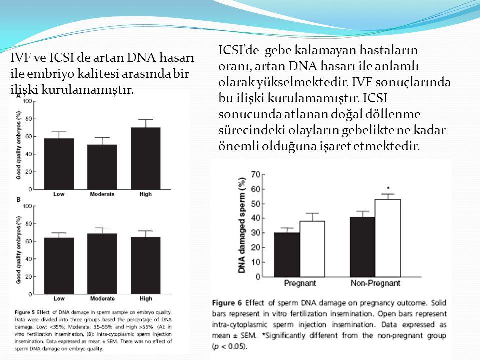 IVF ve ICSI de artan DNA hasarı ile embriyo kalitesi arasında bir ilişki kurulamamıştır. ICSI'de gebe kalamayan hastaların oranı, artan DNA hasarı ile