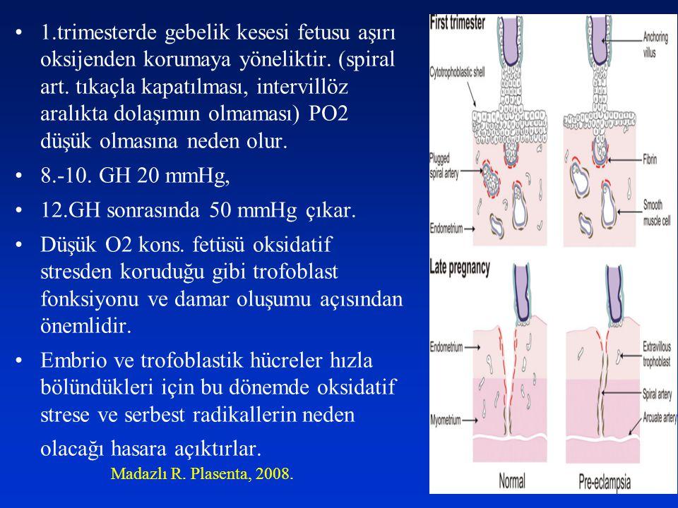 1.trimesterde gebelik kesesi fetusu aşırı oksijenden korumaya yöneliktir. (spiral art. tıkaçla kapatılması, intervillöz aralıkta dolaşımın olmaması) P