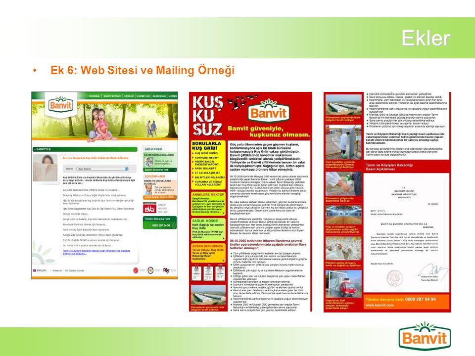 Ekler Ek 6: Web Sitesi ve Mailing Örneği