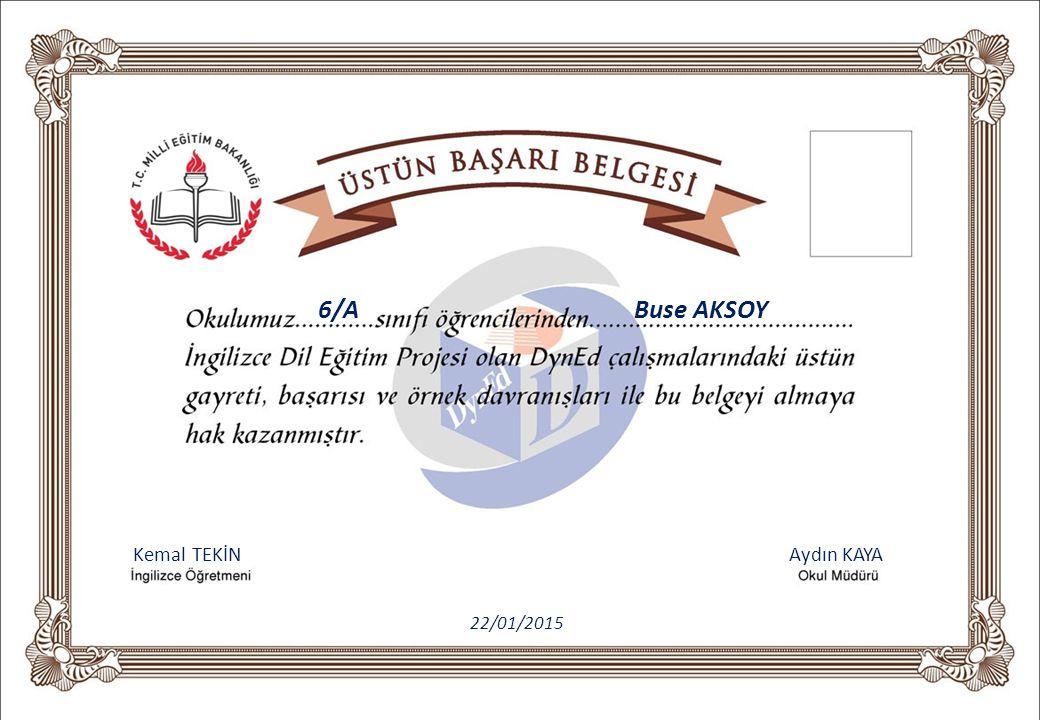 Kemal TEKİN Aydın KAYA 6/A Buse AKSOY 22/01/2015