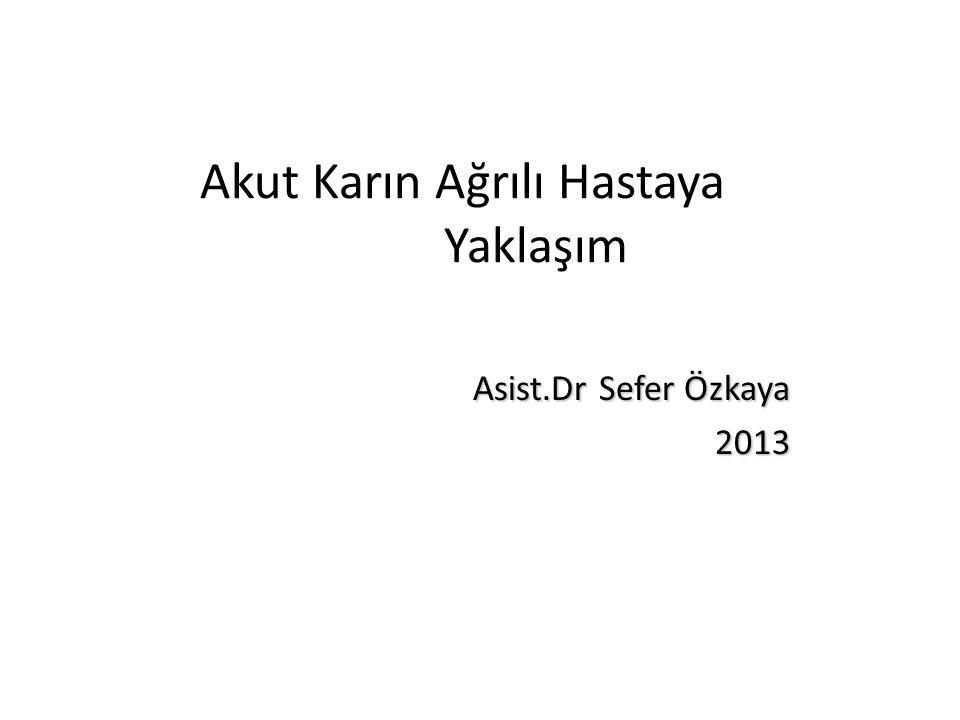 Akut Karın Ağrılı Hastaya Yaklaşım Asist.Dr Sefer Özkaya 2013