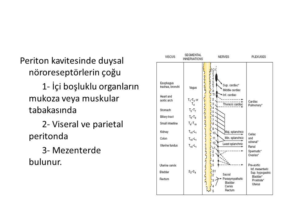 Periton kavitesinde duysal nöroreseptörlerin çoğu 1- İçi boşluklu organların mukoza veya muskular tabakasında 2- Viseral ve parietal peritonda 3- Meze