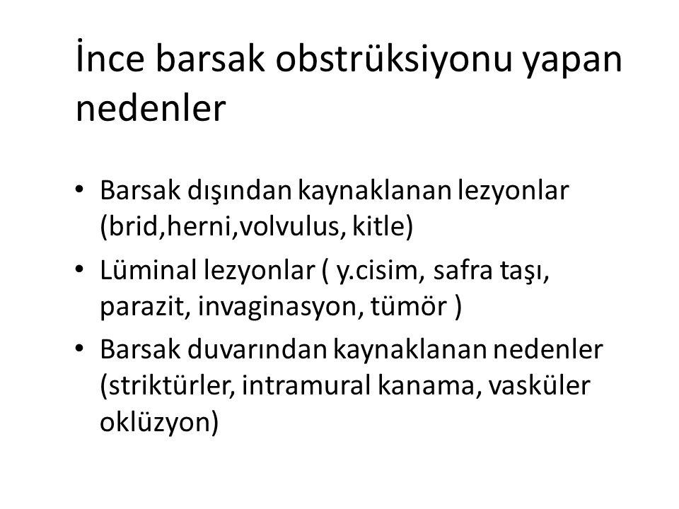 İnce barsak obstrüksiyonu yapan nedenler Barsak dışından kaynaklanan lezyonlar (brid,herni,volvulus, kitle) Lüminal lezyonlar ( y.cisim, safra taşı, p