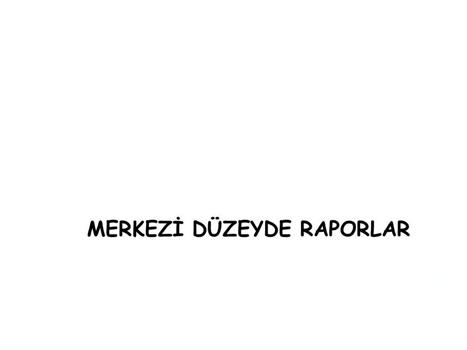 MERKEZİ DÜZEYDE RAPORLAR
