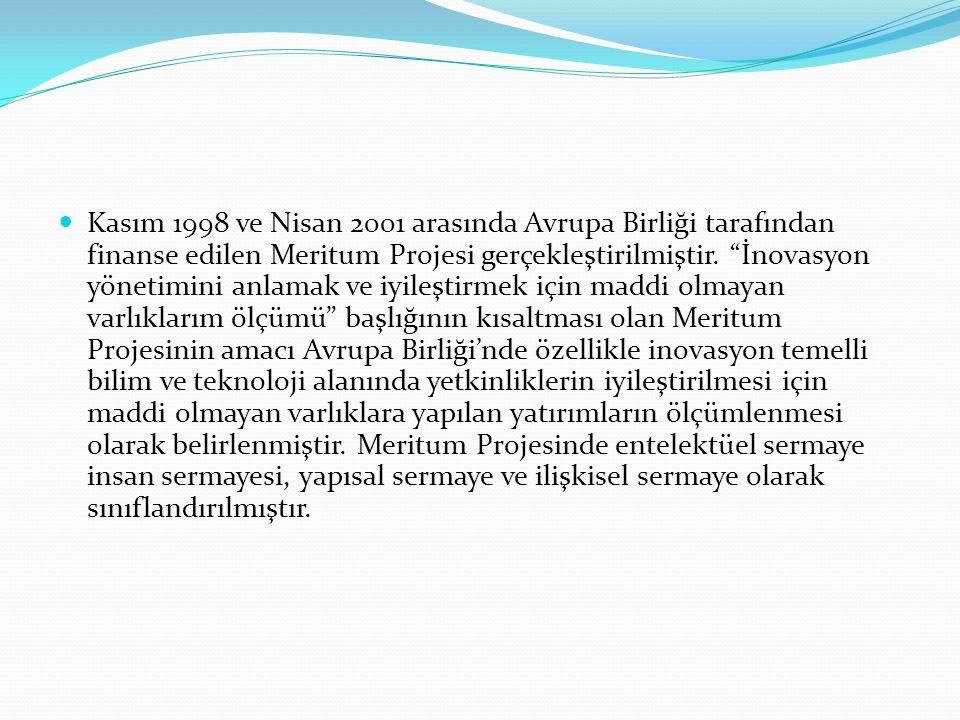 """Kasım 1998 ve Nisan 2001 arasında Avrupa Birliği tarafından finanse edilen Meritum Projesi gerçekleştirilmiştir. """"İnovasyon yönetimini anlamak ve iyil"""