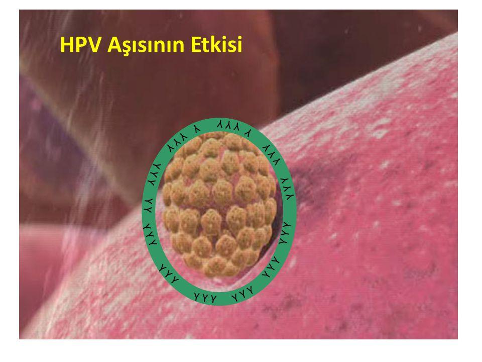 Y Y Y Y Y Y HPV Aşısının Etkisi
